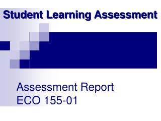 Assessment Report  ECO 155-01