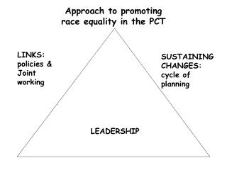 Approach to promoting race equality in the PCT