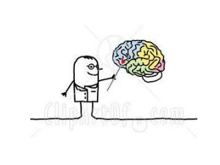 Neurology Stuff