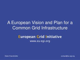 A European Vision and Plan for a Common Grid Infrastructure