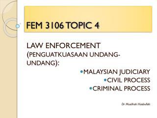 FEM 3106 TOPIC 4