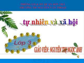 PHÒNG GD & ĐT QUẬN SƠN TRÀ TRƯỜNG TH NGUYỄN VĂN THOẠI