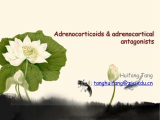 Adrenocorticoids & adrenocortical antagonists