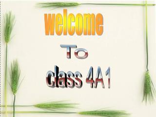class 4A1