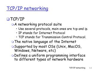 TCP/IP networking