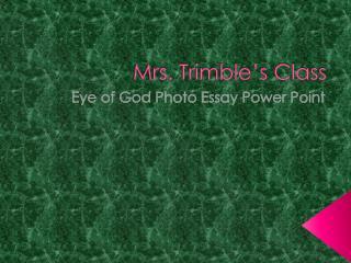 Mrs. Trimble's Class