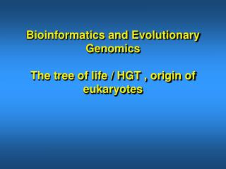 Bioinformatics and Evolutionary Genomics The tree of life / HGT , origin of eukaryotes