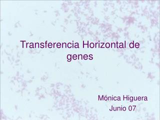 Transferencia Horizontal de genes
