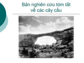 Bản nghiên cứu tóm tắt  về các cây cầu