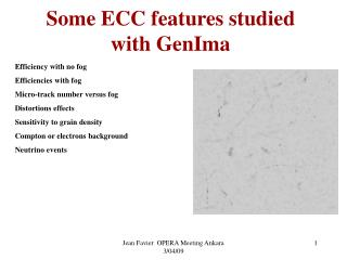 Some ECC features studied with GenIma
