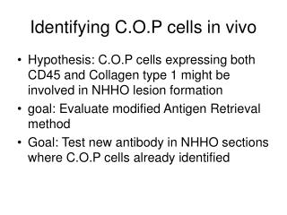 Identifying C.O.P cells in vivo