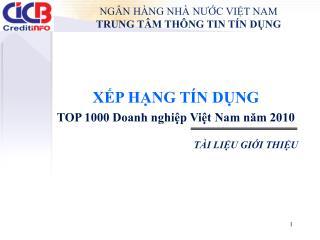 XẾP HẠNG TÍN DỤNG TOP 1000 Doanh nghiệp Việt Nam năm 2010 TÀI LIỆU GIỚI THIỆU