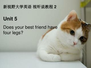 Unit 5 Does your best friend have four legs?