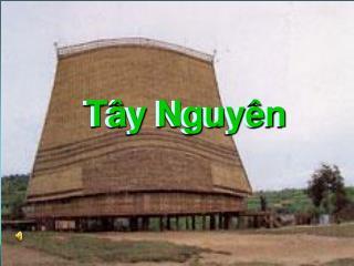 T�y Nguy�n