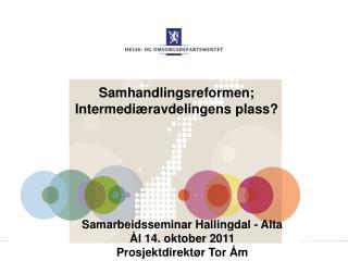 Samhandlingsreformen; Intermediæravdelingens plass?