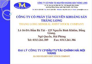 CÔNG TY CỔ PHẦN TÀI NGUYÊN KHOÁNG SẢN  THĂNG LONG THANG LONG MINERAL JOINT STOCK COMPANY