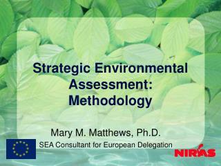 Strategic Environmental Assessment: Methodology