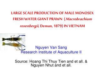 Nguyen Van Sang Research Institute of Aquaculture II