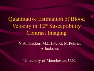 Quantitative Estimation of Blood Velocity in T2* Susceptibility Contrast Imaging