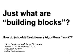 "Just what are ""building blocks""? How do (should) Evolutionary  Algorithms ""work""?"