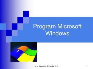 Program Microsoft Windows