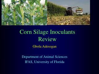 Corn Silage Inoculants Review