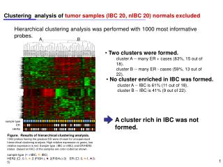 Clustering  analysis of  tumor samples (IBC 20, nIBC 20) normals excluded