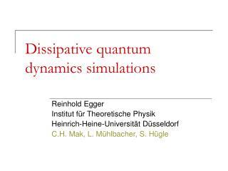 Dissipative quantum dynamics simulations
