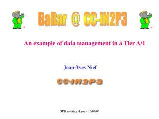 BaBar  @  CC-IN2P3