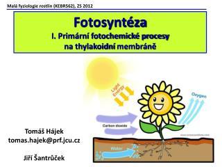 Mal� fyziologie rostlin (KEBR562), ZS 2012