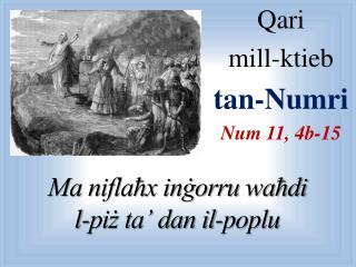 Qari  mill-ktieb  tan-Numri Num 11, 4b-15