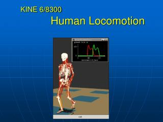 KINE 6/8300 Human Locomotion