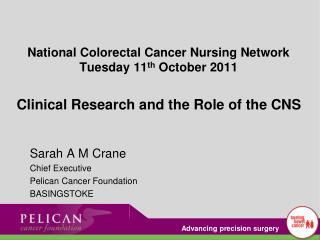 Sarah A M Crane Chief Executive Pelican Cancer Foundation BASINGSTOKE