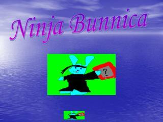 Ninja Bunnica