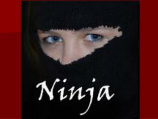 Ninjutsu Ninja