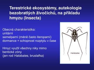 Terestrické ekosystémy, autekologie  bezobratlých živočichů, na příkladu  hmyzu (Insecta)