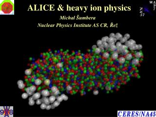 ALICE & heavy ion physics