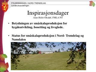 Inspirasjonsdager Aino Holst Oksdøl, FMLA NT