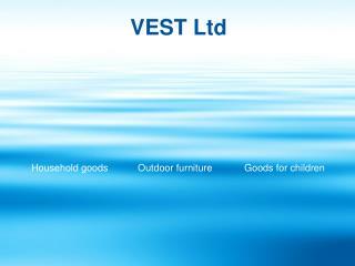 VEST Ltd