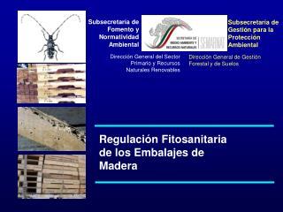 Subsecretaría de Fomento y Normatividad Ambiental