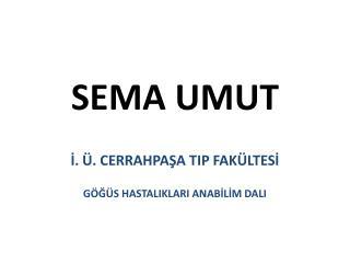 SEMA UMUT