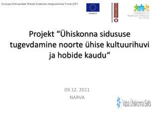 """Projekt """"Ühiskonna sidususe tugevdamine noorte ühise kultuurihuvi ja hobide kaudu"""""""