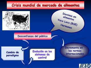 Crisis mundial de mercado de alimentos