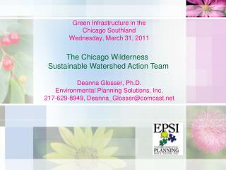 Green Infrastructure in the  Chicago Southland Wednesday, March 31, 2011