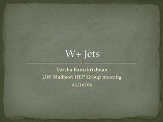 W+ Jets