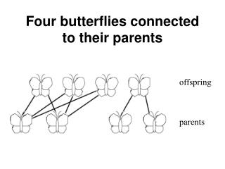 Four butterflies connected to their parents