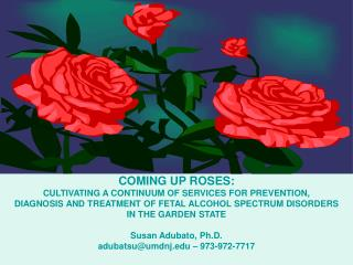 COMING UP ROSES:  CULTIVATING A CONTINUUM OF SERVICES FOR PREVENTION,