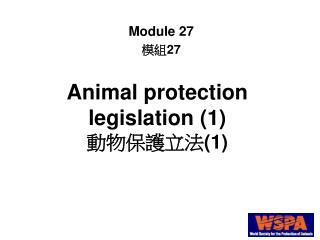 Animal protection legislation 1  1