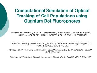 Computational Simulation of Optical Tracking of Cell Populations using Quantum Dot Fluorophores