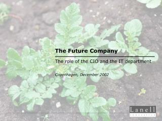 The Future Company The role of the CIO and the IT department Copenhagen ,  December 2002